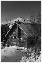 Log cabin in winter. Wiseman, Alaska, USA ( black and white)