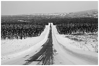 North Slope Haul Road in winter. Alaska, USA ( black and white)