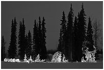 George Horner Ice Park at dusk, 2012 World Ice Art Championships. Fairbanks, Alaska, USA ( black and white)