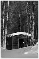 Historic cabin in winter, Chatanika. Alaska, USA ( black and white)