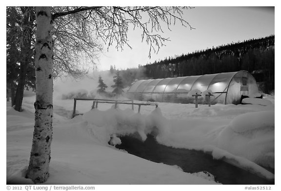 Stream and greenhouse at dawn. Chena Hot Springs, Alaska, USA (black and white)