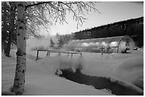 Stream and greenhouse at dawn. Chena Hot Springs, Alaska, USA ( black and white)