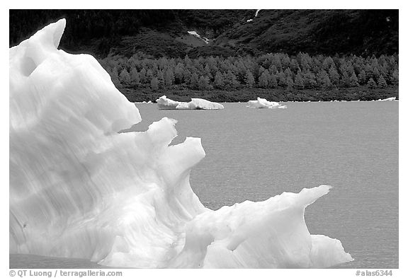 Iceberg framing Portage Lake. Alaska, USA (black and white)