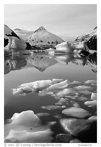 Floating ice in Portage Lake with mountain reflections. Alaska, USA (black and white)
