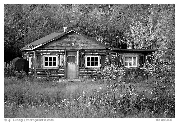 Black And White Picture Photo Wooden Cabin Alaska Usa