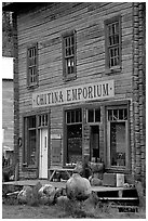 Chitina Emporium. Alaska, USA ( black and white)