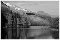 Long Lake with Autum Aspens, late afternoon. Alaska, USA ( black and white)