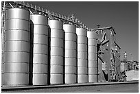 Grain silos. California, USA (black and white)