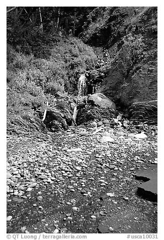 Hikers exploring a cascade, Lost Coast. California, USA (black and white)