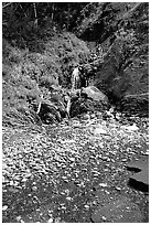Hikers exploring a cascade, Lost Coast. California, USA ( black and white)