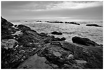 Tide pool with sea stars at sunset, Weston Beach. Point Lobos State Preserve, California, USA ( black and white)