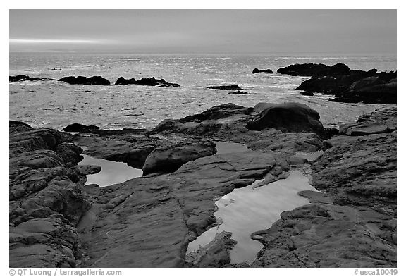Tidepools, sunset, Weston Beach. Point Lobos State Preserve, California, USA (black and white)