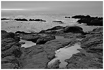 Tidepools, sunset, Weston Beach. Point Lobos State Preserve, California, USA ( black and white)