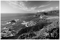 Coastline and Bixby creek bridge, late afternoon. Big Sur, California, USA (black and white)