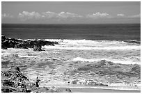 Fisherman, Bean Hollow State Beach. San Mateo County, California, USA ( black and white)