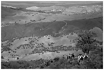 Group of Hikers descending slopes, Mt Diablo State Park. California, USA (black and white)
