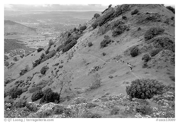 Group of Hikers on a distant trail, Mt Diablo State Park. California, USA (black and white)