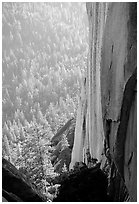 Rock wall and forest, the Needles,  Giant Sequoia National Monument. California, USA ( black and white)