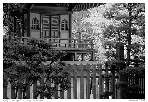 Black and white picture photo pagoda in japanese garden san francisco california usa