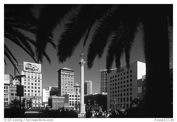 Union square framed by palm trees, afternoon. San Francisco, California, USA (black and white)