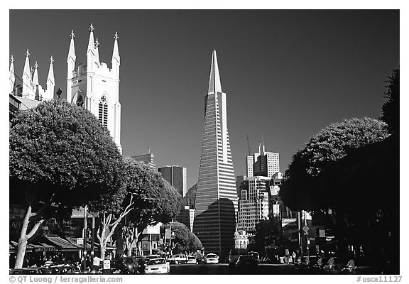 Cathedral and Transamerica Pyramid, North Beach, afternoon. San Francisco, California, USA (black and white)