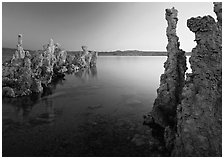 Tufa spires and Mono Lake at dusk. Mono Lake, California, USA ( black and white)