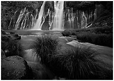 Grasses, stream and wide waterfall, Burney Falls State Park. California, USA ( black and white)