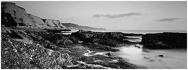 Seashore and cliffs. Point Reyes National Seashore, California, USA (Panoramic black and white)