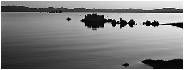 Color gradient on Mono Lake at sunrise. Mono Lake, California, USA (Panoramic black and white)