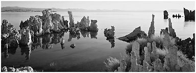 Lake tufa scenery. Mono Lake, California, USA (Panoramic black and white)