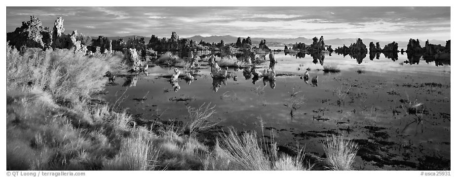 Mono Lake landscape. Mono Lake, California, USA (black and white)