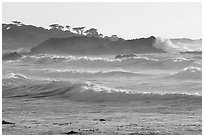 Waves, late afternoon, seventeen-mile drive, Pebble Beach. California, USA (black and white)