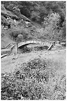 Stone bridge, Alum Rock Park. San Jose, California, USA (black and white)