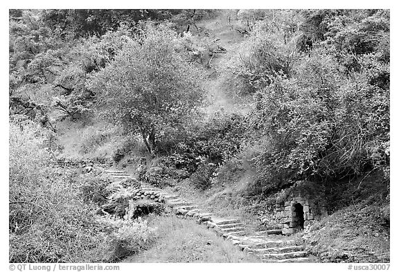 Pathway and stairs, Alum Rock Park. San Jose, California, USA (black and white)