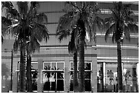 Palm trees reflected in building at sunset. San Jose, California, USA (black and white)
