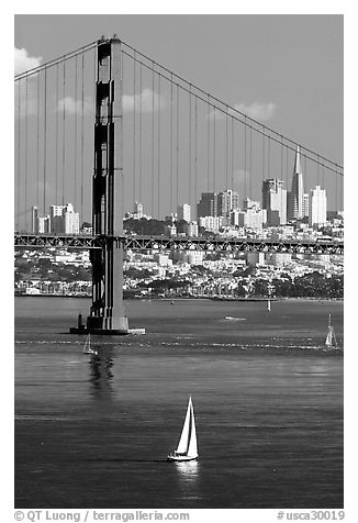 Sailboat, Golden Gate Bridge, and  city skyline, afternoon. San Francisco, California, USA (black and white)