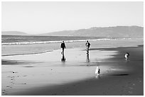 People and dogs strolling on beach near Fort Funston,  late afternoon, San Francisco. San Francisco, California, USA ( black and white)