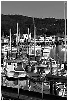 Boats and Fisherman's Wharf, afternoon. Monterey, California, USA (black and white)