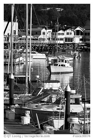 Boats and Fisherman's Wharf, afternoon, Monterey. Monterey, California, USA (black and white)
