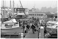 Island Packers pier in dawn fog. California, USA (black and white)