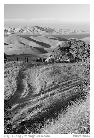 Golden hills and San Luis Reservoir. California, USA (black and white)