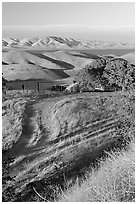 Golden hills and San Luis Reservoir. California, USA ( black and white)