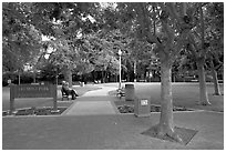 Freemont Park. Menlo Park,  California, USA (black and white)