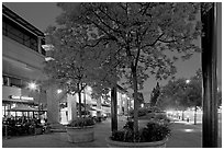 Menlo Center at night, with cafe Borrone and Keplers bookstore. Menlo Park,  California, USA ( black and white)