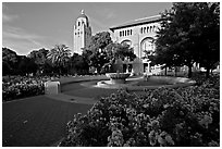 Bing Wing of Green Library and Hoover Tower,  late afternoon. Stanford University, California, USA (black and white)