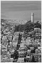 View from above of Telegraph Hill and Coit Tower, late afteroon. San Francisco, California, USA ( black and white)