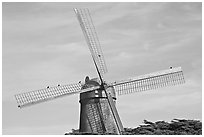 Dutch Mill and crows. San Francisco, California, USA ( black and white)