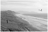 Man piloting model glider, Fort Funston, late afternoon. San Francisco, California, USA (black and white)