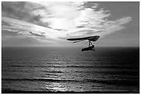 Soaring in a hang glider above the ocean at sunset,  Fort Funston. San Francisco, California, USA ( black and white)