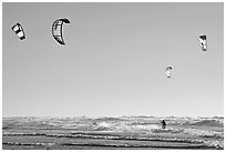 Multitude of kite surfing wings, afternoon. San Francisco, California, USA ( black and white)